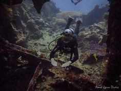 Day 107 - Amed (Bali). Diving around the Liberty wreck in Tulamben and after we saw a reef tip shark in Amed