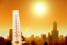 global warming impact: heatwaves