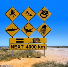 World Cup Fun Fact: AUSTRALIA How does a road trip in Australia sound to you? Think outback, aborigines, diving, wildlife and so much more! Interesting road signs only in Australia! Drivers, beware kangaroos that might hop across the roads! Western Australia, Australia Travel, Queensland Australia, Australia Funny, Visit Australia, South Australia, Australia Winter, Tasmania, Australian Road Signs