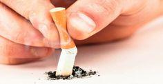 Το τσιγάρο δεν κόβεται, το τσιγάρο σβήνεται! | The Boss