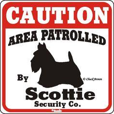 scottie sign