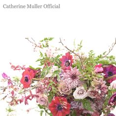 Catherine Muller style