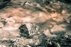 Stone in water by Jens Stadsgaard on 500px