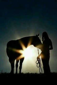 @CarrieGaard #Horses my power.