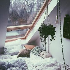 ☽ ☼ ƈʜɪʟʟ ѵɪвěs ☼ ☾ @mdmcuriel-can you imagine falling asleep here? Gazing at the stars?