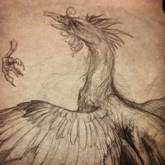 Details #phoenix #detail #tattoo #tattooart #tattoodesign...