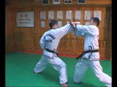 Hapkido Self Defense Volume 2