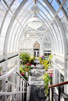 Greenhouse repinned via Shar Allred