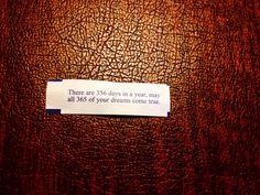 ha ha fortune cookie - Google Search
