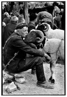 Constantine Manos, 'Shepherd at Market', Crete, Greece, 'A Greek Portfolio' Vintage Photography, Street Photography, Animal Photography, Greece Photography, People Photography, Wildlife Photography, Magnum Photos, Old Photos, Vintage Photos
