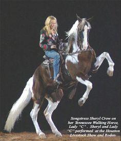 "Sheryl Crow on ""Lady C"""