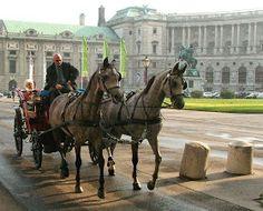 FATTO IN VILLA: BACAINAGLIA em Viena / Bacainaglia at Wien-Austria
