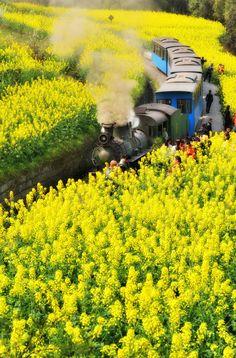 Steam Train, JiaYang, Sicuan, China