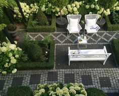 🌳🌾formal garden 🌾🌳 #mygarden #garden #instagardenlovers #haven #minhave #tuin #garten #hage #trädgård #jardin #boxwood #annabelle #formalgarden #symmetric