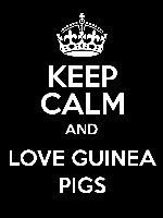 Yeah.... I love my guinea pig more than I really should......lol