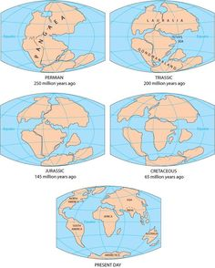 Parts of supercontinent Pangaea eventually drifted apart to become the continents we know today.