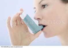 Cat Asthma Inhaler * You can find more details by visiting the image link.
