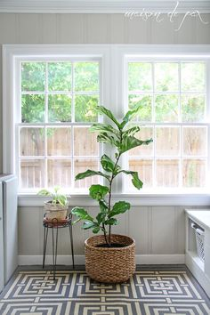 click for 10 ideas of places to put indoor plants! via http://maisondepax.com