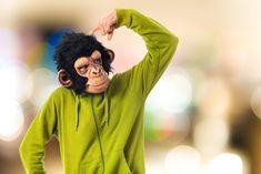 A może pochodzimy od małpy?