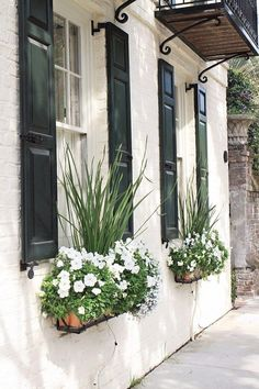 Beautiful window box ideas and tips from Charleston! These flower box ideas can help improve curb appeal! Also, get a pretty, free Charleston window box printable too for spring decor!! #gardening #homeimprovement #windowbox
