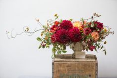 Wedding Flower Arrangements How to Create a Fall Table Floral Arrangement - Your home for all things Design. Home Tours, DIY Project, City Guides, Shopping Guides, Before Fall Flowers, Beautiful Flowers, Wedding Flowers, Fall Flower Arrangements, Flower Vases, Fall Table, Thanksgiving Table, Planting Flowers, Girly