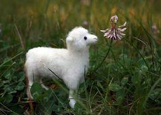 wee needle-felted sheep