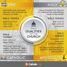 Infographic: The 4 qualities of the Catholic Church (one, holy, Catholic and apostolic)