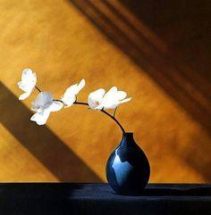 #nature #love #romantic #fashion #flower #bouquet #InspirationFleurs #fleurs #myfashionlove
