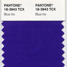 PANTONE 18-3943 Blue Iris was the 2008 Color of the Year.