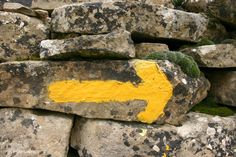 The ever present yellow arrow to guide you along your camino.  Camino del Norte.    http://www.macsadventure.com/holiday-869/camino-del-norte