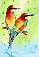 rainbow birds, colored pencils and ballpoint pen drawing, illustration by http://saraportrait.deviantart.com/