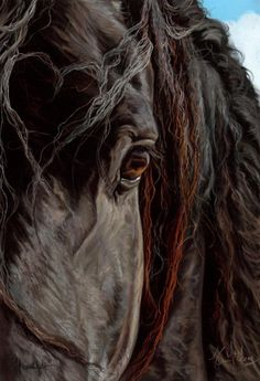 The Equine Art of Kim McElroy  http://www.spiritofhorse.com/store/store/comersus_viewItem.asp?idProduct=503=71