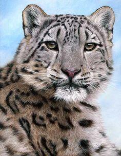 Snow leopard by my favorite artist Jason Morgan U.K.