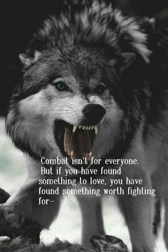 """The wolf. """"Combat isn't for everyone. Wisdom Quotes, True Quotes, Great Quotes, Motivational Quotes, Inspirational Quotes, Fight For Love Quotes, Wolf Qoutes, Lone Wolf Quotes, Wolf Love"""