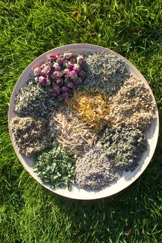 Herbs For Fertility, Yoni Steam Herbs, V Steam, Steam Recipes, Organic Herbs, Menstrual Cycle, Medicinal Herbs, Herbal Medicine, Biodegradable Products