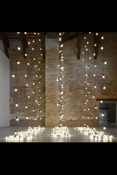 Fairy Lights (put behind vertical garden)