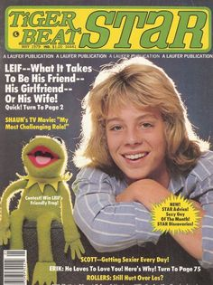 Tiger Beat Star - Leif Garrett....love my frog...came out in 76!! ....liked leif too!!   Lol