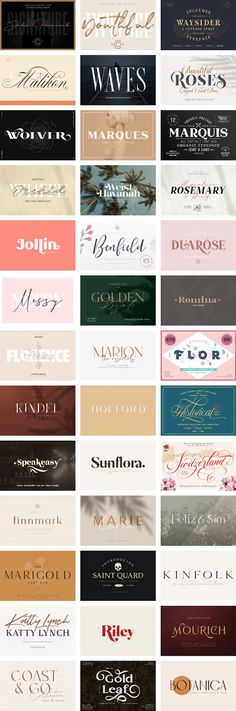 Typography Bundle Wish List 20 Ideas On Pinterest In 2020 Typography Lettering Fonts