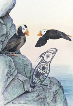 Puffins Pacific Art | Sue Coleman  Love this artist! ss