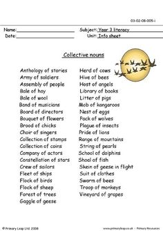 Common and Proper Nouns Poster | Collective Nouns Worksheet