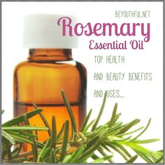 benefits and uses of rosemary oil
