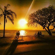 """Orla do Guaíba - Porto Alegre - Brasil - Rio Grande do Sul. """"... O Guaíba é um ecossistema que sustenta uma rica biodiversidade, onde interagem diversas espécies vegetais e animais, que dependem de sua boa qualidade e preservação. ..."""" Fonte: (http://pt.wikipedia.org/wiki/Lago_Gua%C3%ADba)"""