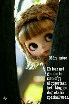 Good Morning Good Night, Good Morning Wishes, Day Wishes, Greetings For The Day, Evening Greetings, Afrikaanse Quotes, Goeie More, Best Quotes, Qoutes