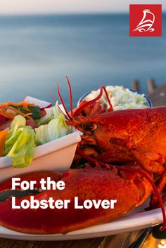 The most delicious ways to enjoy fresh New Brunswick lobster, from sea to plate. A must for any foodie visiting Canada's east coast. Canadian Cuisine, Immigration Canada, Visit Canada, Cape Breton, Fresh Seafood, New Brunswick, Banff, Nova Scotia, North America