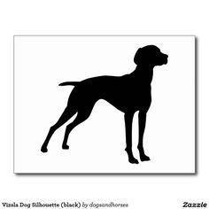 Vizsla Dog Silhouette (black) Postcard