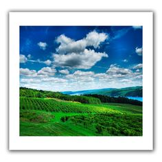 'Vineyard and Lake' by Steven Ainsworth Canvas Poster