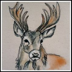 Another Loopy stag!