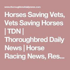 Horses Saving Vets, Vets Saving Horses | TDN | Thoroughbred Daily News | Horse Racing News, Results and Video | Thoroughbred Breeding and Auctions