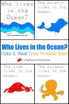 Who Lives in the Ocean? Color and Read Printable Book for Early Readers Ocean Activities, Book Activities, Preschool Activities, Vocabulary Activities, Ocean Lesson Plans, Summer Lesson, Ocean Projects, Ocean Unit, Ocean Crafts