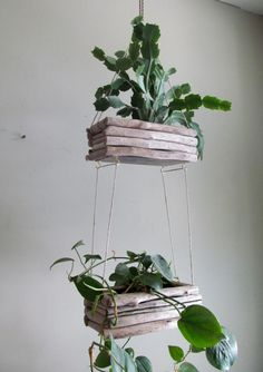 Driftwood Hanging Planter Double Edition by DriftingConcepts House Plants Hanging, Hanging Planters, Diy Garden Projects, Garden Crafts, Ikebana, Indoor Garden, Indoor Plants, Driftwood Planters, Metal Planter Boxes